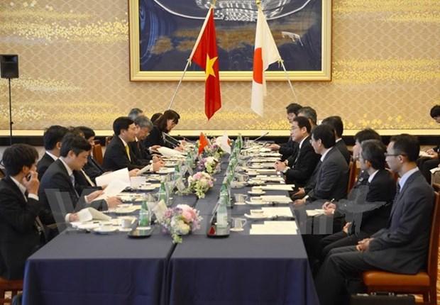 Vicepremier vietnamita dialoga con lideres de Japon hinh anh 2