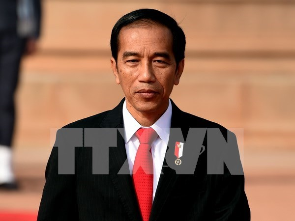 Presidente indonesio pide disolver grupo islamico HTI hinh anh 1