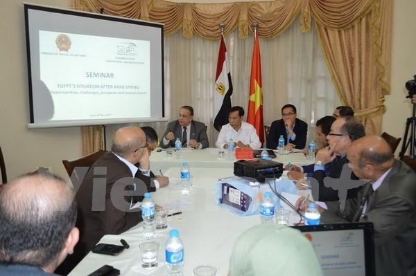 Buscan oportunidades de cooperacion entre Vietnam y Egipto hinh anh 1