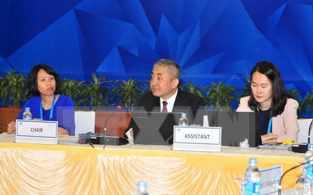 Continua en Hanoi segunda Reunion de Altos Funcionarios del APEC hinh anh 1