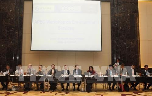 Miembros del APEC trabajan para impulsar la asociacion en ciencia y tecnologia hinh anh 1