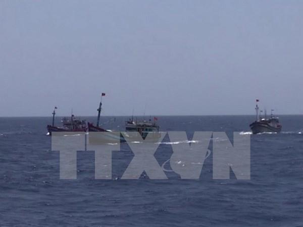 Prohibicion de pesca de China en aguas de Vietnam no tiene valor hinh anh 1