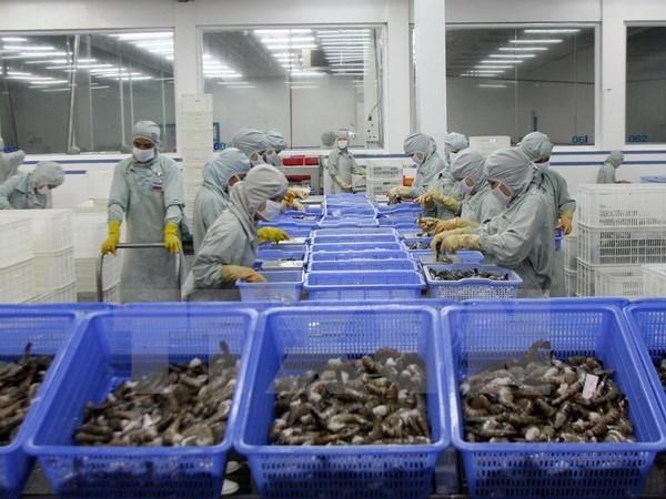 Vietnam invierte en mejorar la competitividad del sector acuicola hinh anh 1