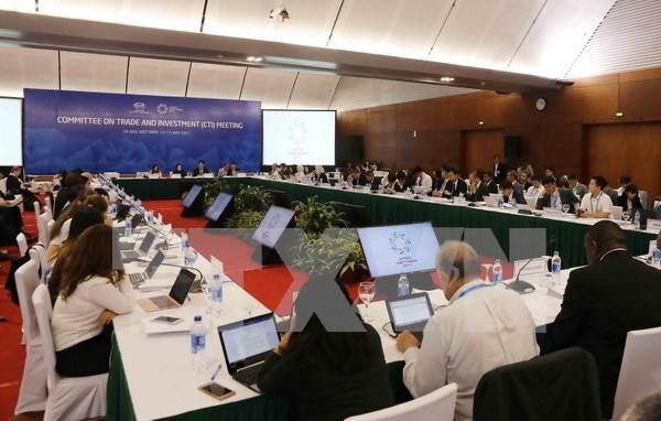 APEC 2017: delegados sugieren aprovechar oportunidades generadas por era digital hinh anh 1