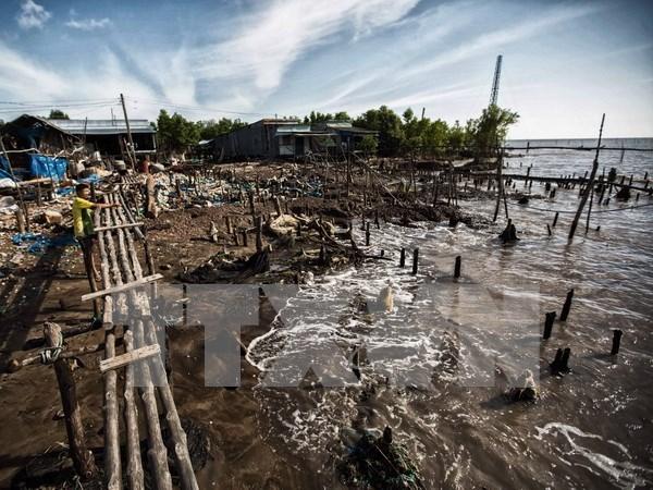 Provincia vietnamita pierde anualmente 450 hectareas de tierra costera por erosion hinh anh 1