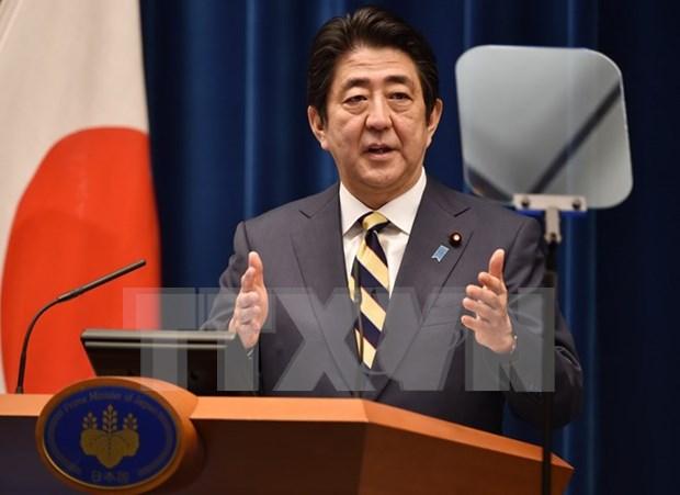 Japon y Nueva Zelanda se comprometen a seguir adelante con TPP hinh anh 1