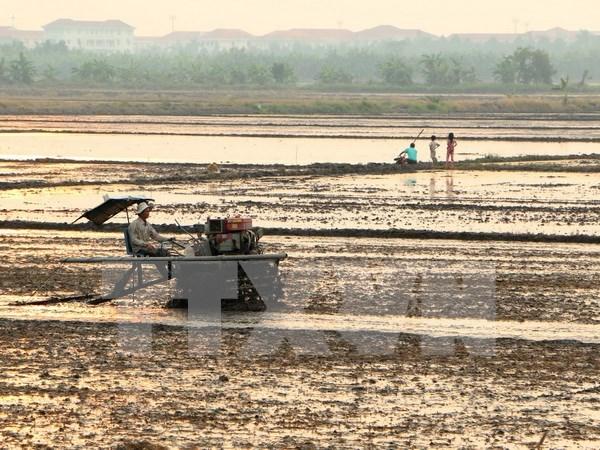 Vietnam y UNICEF por reducir efectos de desastres naturales en ninos hinh anh 1