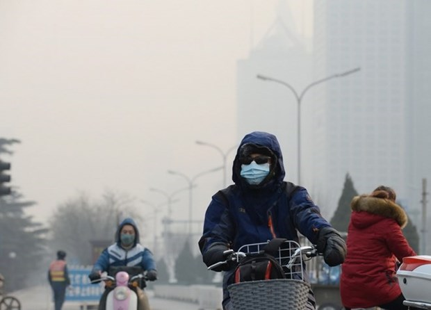 Indonesia asegura a sus vecinos de ASEAN que no habra problemas de neblina hinh anh 1