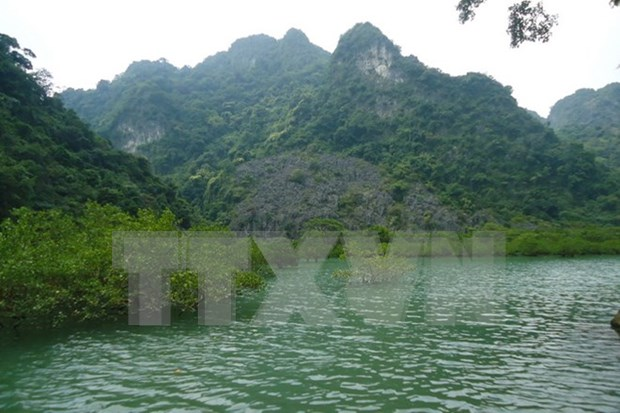 Reconocen a Bai Tu Long como parque patrimonial de la ASEAN hinh anh 1