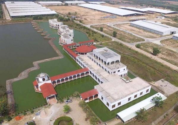 Vinamilk exporta productos lacteos a China hinh anh 1