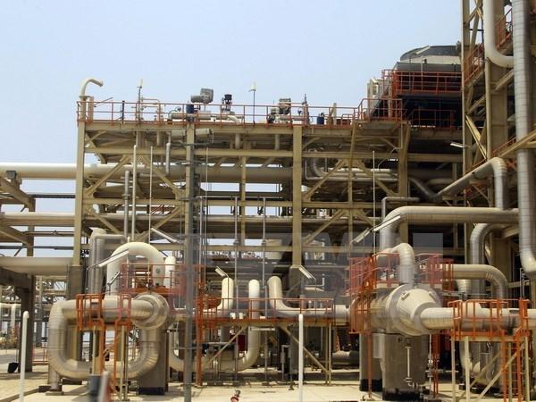 Vietnam y Australia buscan oportunidades de cooperacion energetica hinh anh 1
