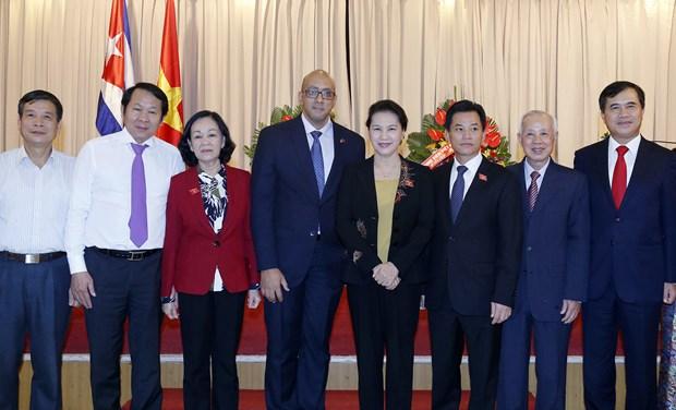 Truong Thi Mai asume cargo de presidenta de Asociacion de Amistad Vietnam-Cuba hinh anh 1
