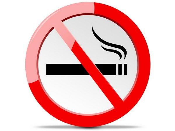 Vietnam organiza actividades de concienciacion por el Dia mundial sin tabaco hinh anh 1
