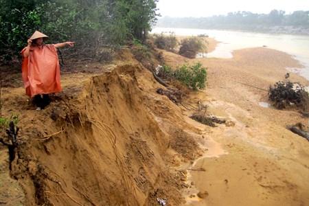 UE ayuda a Vietnam en lucha contra erosion costera hinh anh 1