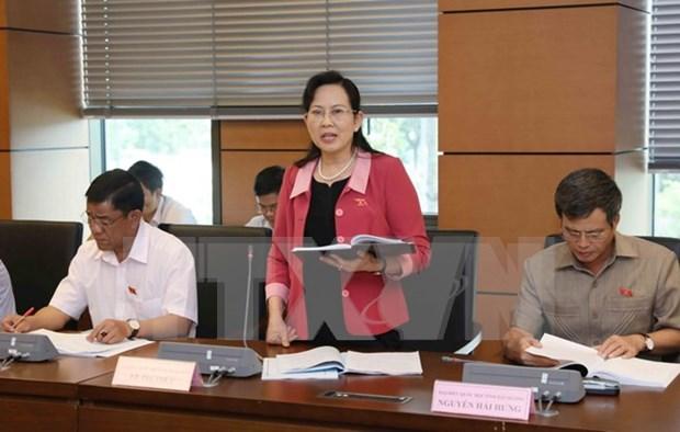 Parlamento vietnamita revisa Ley de Planificacion y solucion de deudas malas hinh anh 1