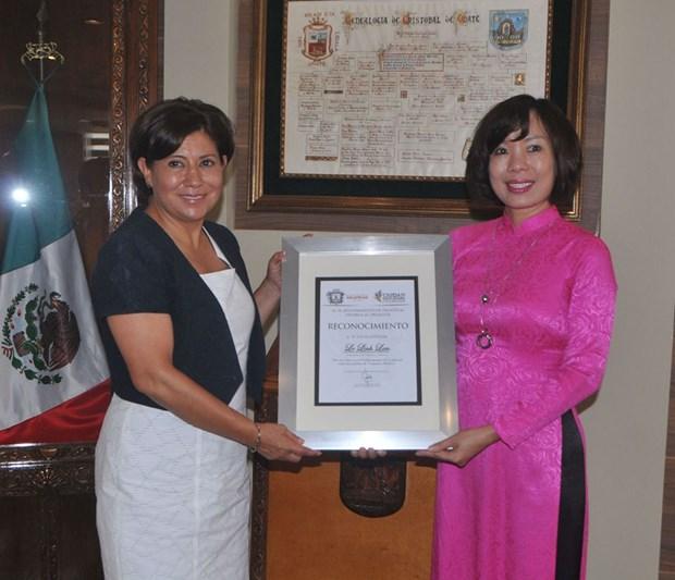 Impulsan cooperacion entre localidades vietnamitas y mexicanas hinh anh 3