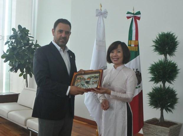 Impulsan cooperacion entre localidades vietnamitas y mexicanas hinh anh 1