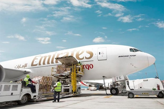 Aerolinea Emirates impulsa exportaciones de frutas vietnamitas a EAU hinh anh 1