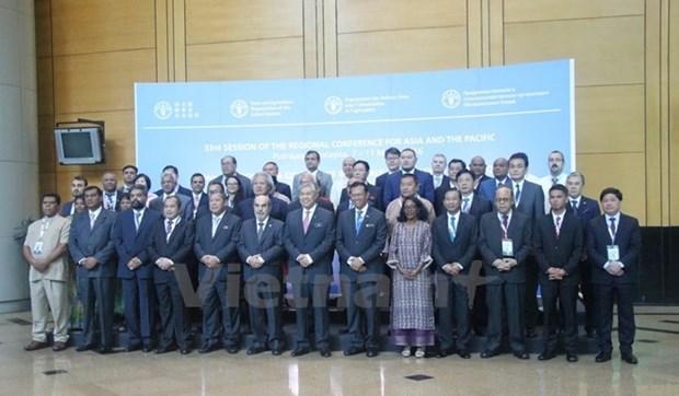 Vietnam-ONU: Un modelo ejemplar de cooperacion para el desarrollo hinh anh 1