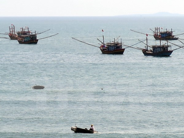 Provincia vietnamita impulsa actividades en respuesta a desastres maritimos hinh anh 1