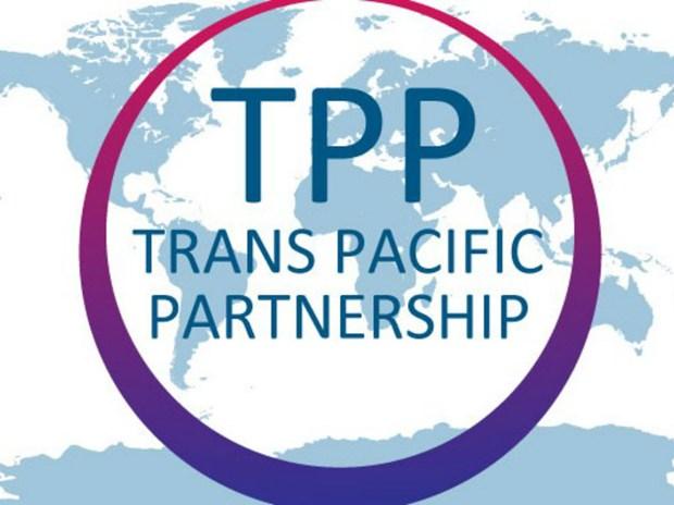 Debatiran en Japon el futuro del Tratado de Asociacion Transpacifico hinh anh 1