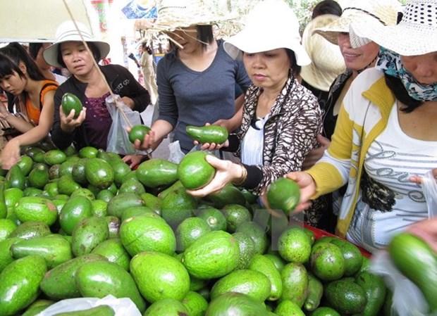 Inauguran en Vietnam festival de frutas de provincias surenas hinh anh 1