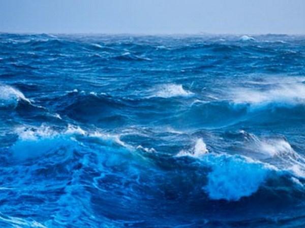Vietnam celebra Dia Mundial del Oceano con diversas actividades hinh anh 1