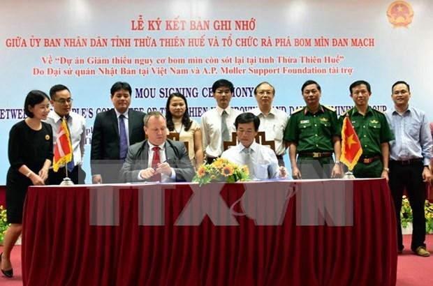 Ofrecen ayuda internacional para remocion de explosivos de guerra en Vietnam hinh anh 1
