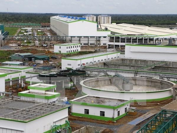 Vietnam y Estados Unidos exploran oportunidad de cooperacion en bioenergia hinh anh 1
