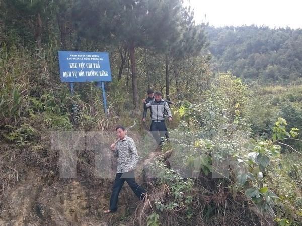 Vietnam implementara en breve las regulaciones del CITES hinh anh 1