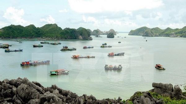 Ha Long acogera Dialogo sobre turismo sostenible de APEC hinh anh 1