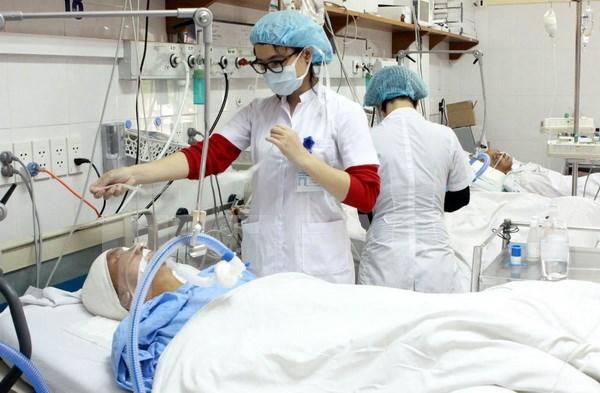 Vietnam y Japon impulsan cooperacion en capacitacion de asistentes de salud hinh anh 1