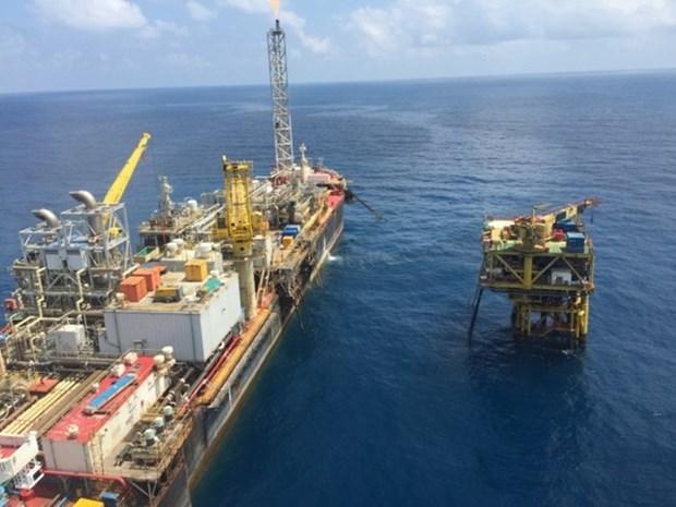 Grupo petrolero de Vietnam sobrecumple metas de explotacion de crudo hinh anh 1
