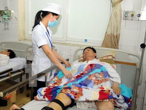 Comparten en Vietnam experiencias en prevencion de enfermedades causadas por arbovirus hinh anh 1