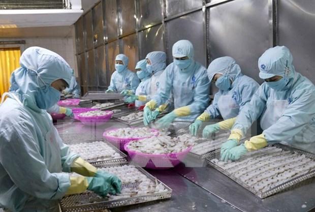 En alza exportaciones de productos acuicolas de Vietnam hinh anh 1
