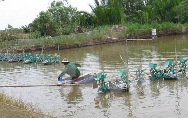 Vietnam acelera la modernizacion de nuevas zonas rurales hinh anh 1