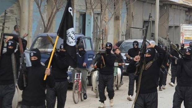 Expertos advierten riesgo de expansion de Estado Islamico en Sudeste de Asia hinh anh 1