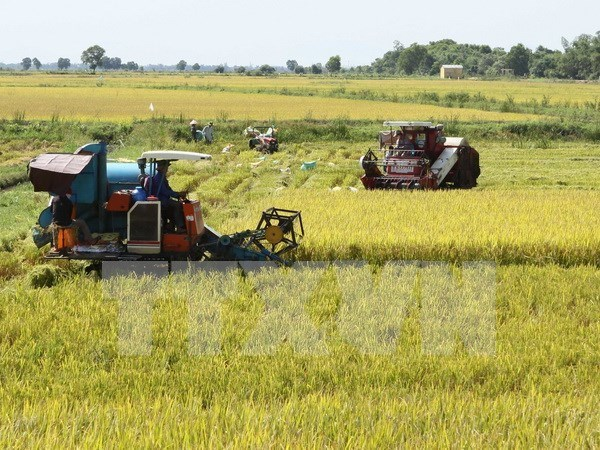 Australia busca cooperacion en agricultura de alta tecnologia con el Delta de Mekong hinh anh 1