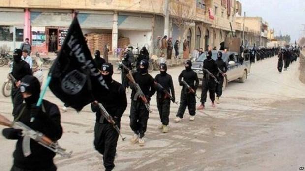 The Yakarta Post: ASEAN debe unirse en lucha contra el Estado Islamico hinh anh 1