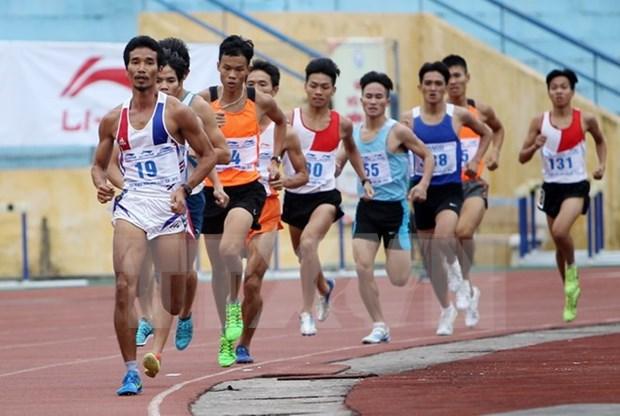 Atletismo de Vietnam gana nueve medallas de oro en Tailandia hinh anh 1