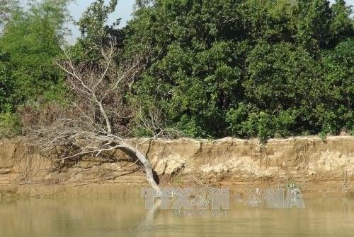 Provincia vietnamita implementara proyectos para prevenir inundaciones hinh anh 1