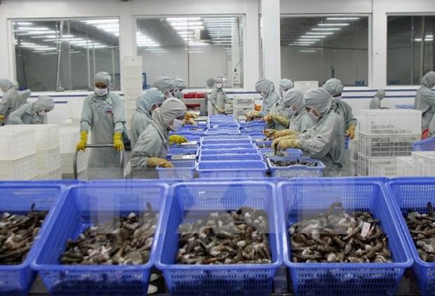 Vietnam busca medidas para elevar valor del sector camaronero hinh anh 1