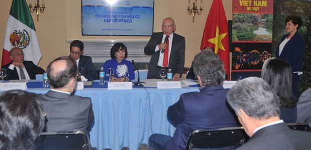Cumbre del APEC 2017 impulsa relaciones Vietnam-Mexico hinh anh 3