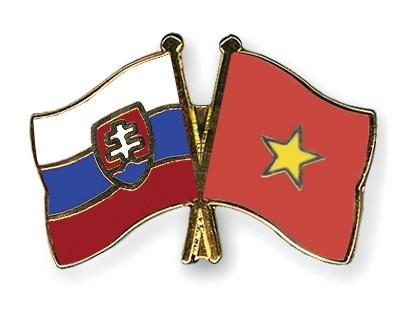 Vietnam y Eslovaquia debaten esquema de cooperacion economica hinh anh 1