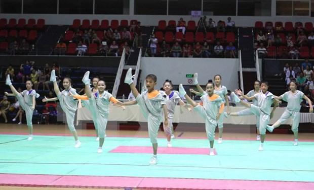Entrenadores extranjeros de aerobic asisten a curso de preparacion en Hanoi hinh anh 1