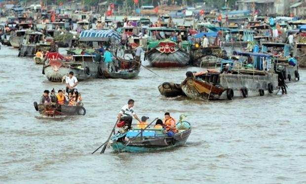 Ciudad vietnamita de Can Tho registra un buen desarrollo del turismo hinh anh 1