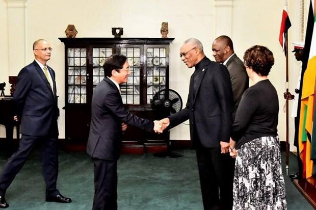 Presidente de Guyana aspira a una mayor cooperacion con Vietnam hinh anh 1