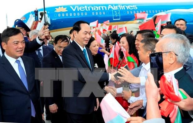 Vietnamitas residentes en exterior, importante fuerza para desarrollo nacional, confirma presidente Dai Quang hinh anh 1