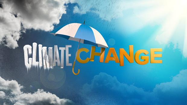 Destacan aportes vietnamitas al despliegue de Acuerdo de Paris sobre cambio climatico hinh anh 1