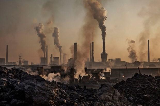 Vietnam comprometido a reducir emision de gases de efecto invernadero hinh anh 1